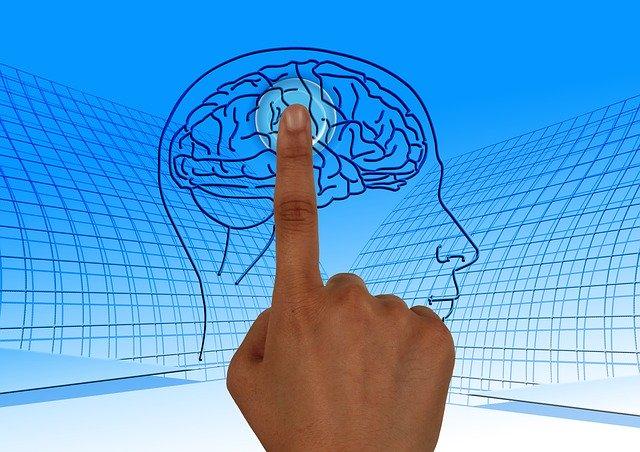 Wie können wir unseren Körper vor Krankheiten und unser Gehirn vor Verschwörungstheorien schützen?